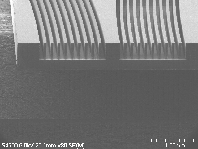 SEM Curved Channels