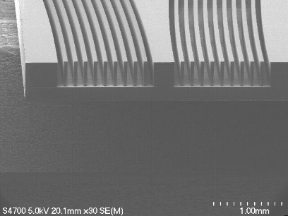 Figure 6. A SEM picture of an actual EA plate